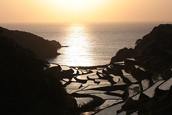 Sunset and Terraced Rice Paddy Fields at Hamanoura